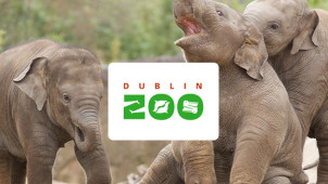 Annual Family Pass from €180 at Dublin Zoo